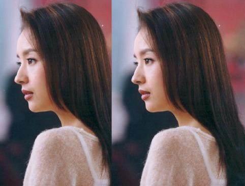 赵丽颖鼻子,热巴鼻子,刘亦菲鼻子,都敌不过她的完美鼻子-第12张图片