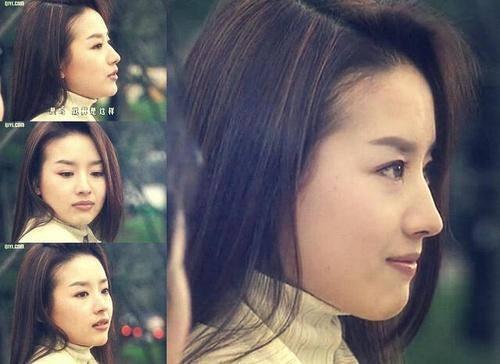 赵丽颖鼻子,热巴鼻子,刘亦菲鼻子,都敌不过她的完美鼻子-第13张图片