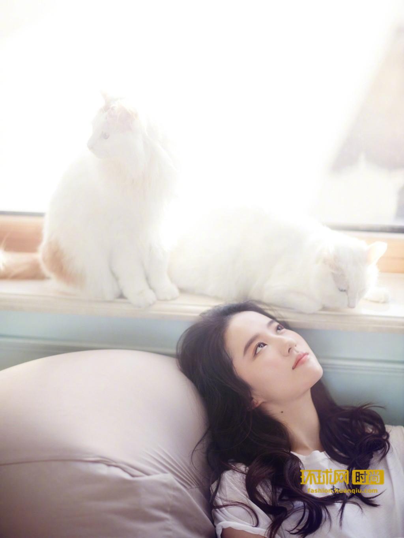 刘亦菲 萌宠写真-第3张图片