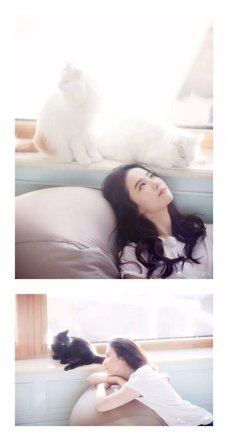 二代妖精 | 刘亦菲-第3张图片