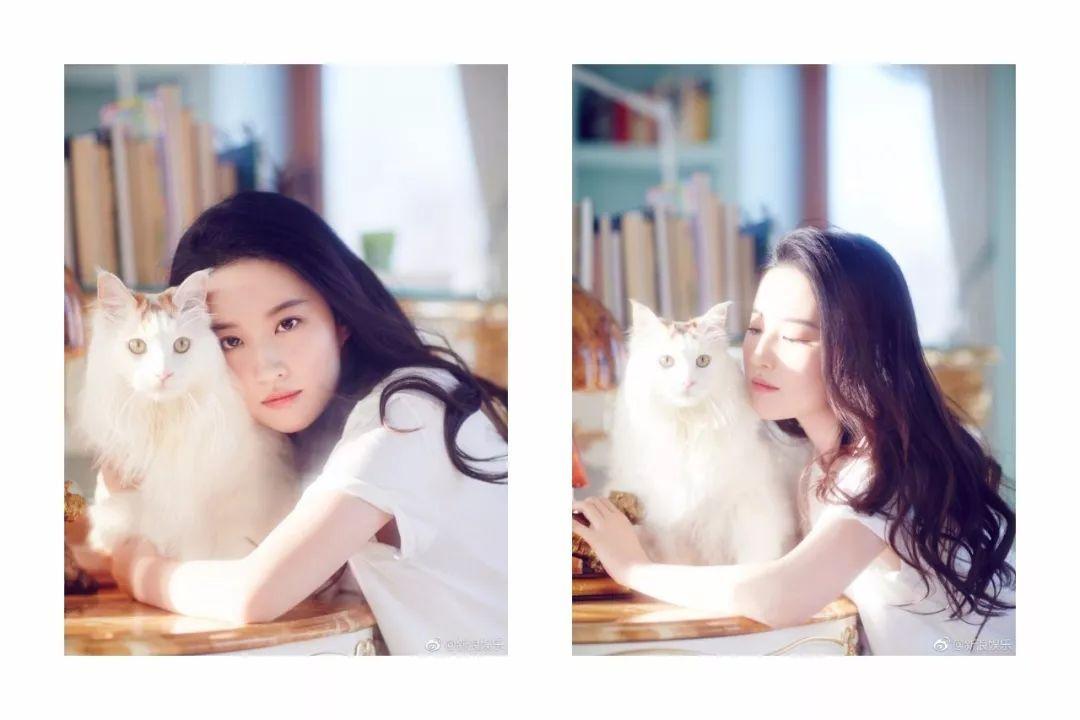 二代妖精 | 刘亦菲-第4张图片