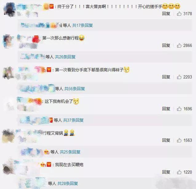 刘亦菲和宋承宪分手却把粉丝高兴坏了,难怪刘亦菲之前说呵呵哒-第3张图片