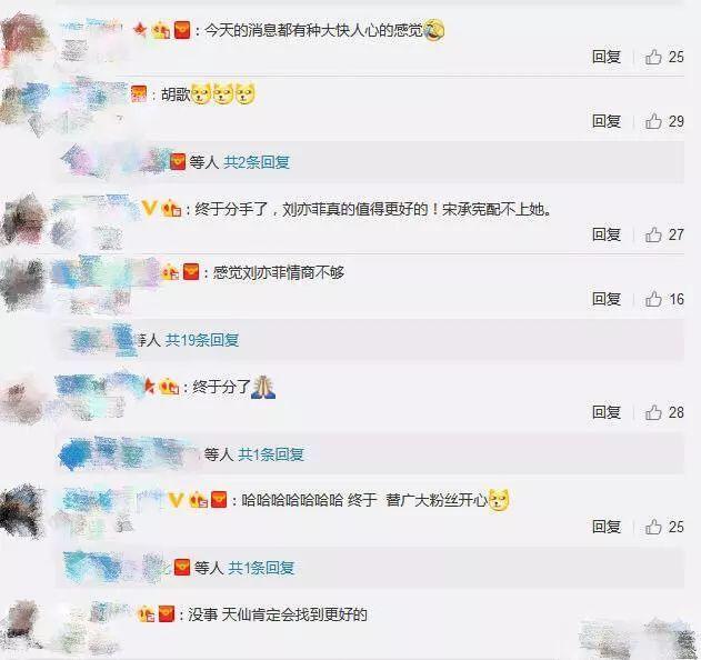 刘亦菲和宋承宪分手却把粉丝高兴坏了,难怪刘亦菲之前说呵呵哒-第6张图片