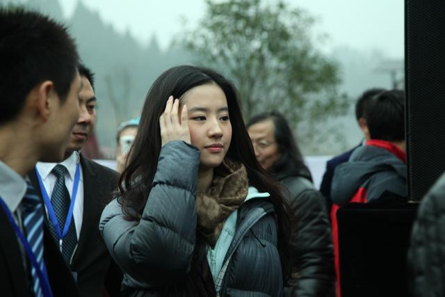 刘亦菲在南充素颜也很美丽,引粉丝追捧-第18张图片