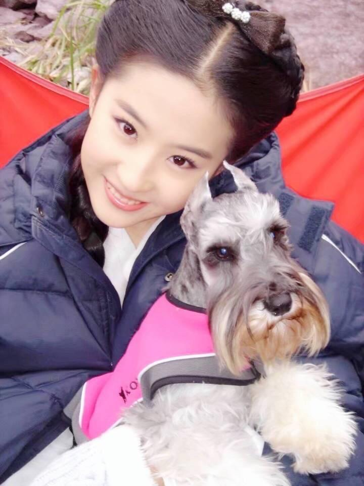 刘亦菲蒙面连发9个表情引网友疯狂猜测-第5张图片
