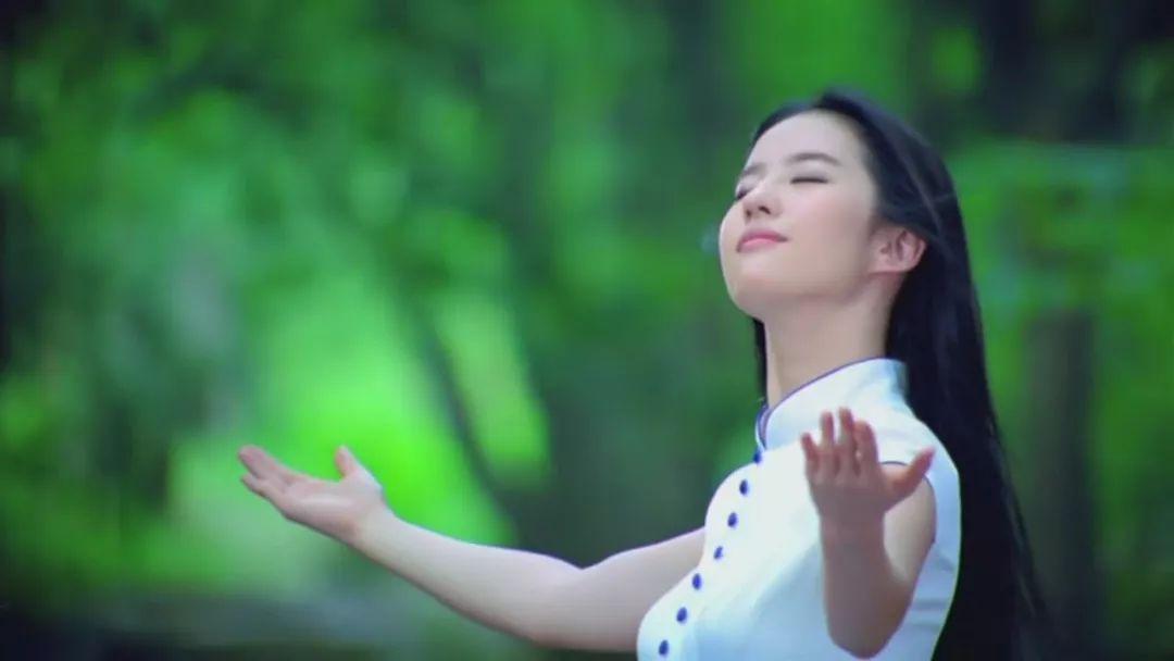 穿旗袍,看明星之:刘亦菲-第3张图片