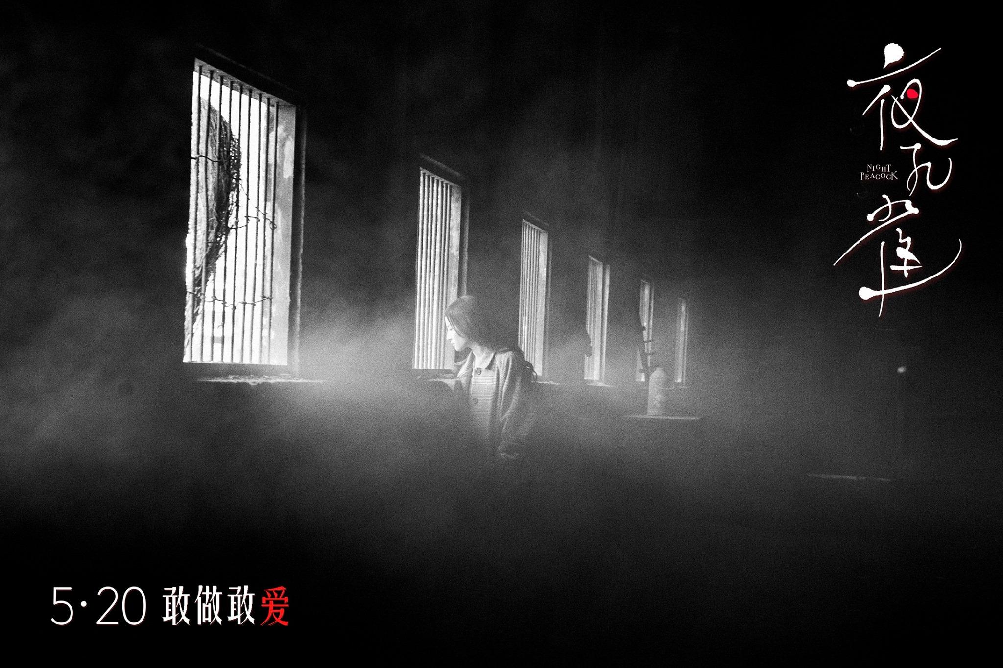 夜孔雀:电影海报剧照图集汇总