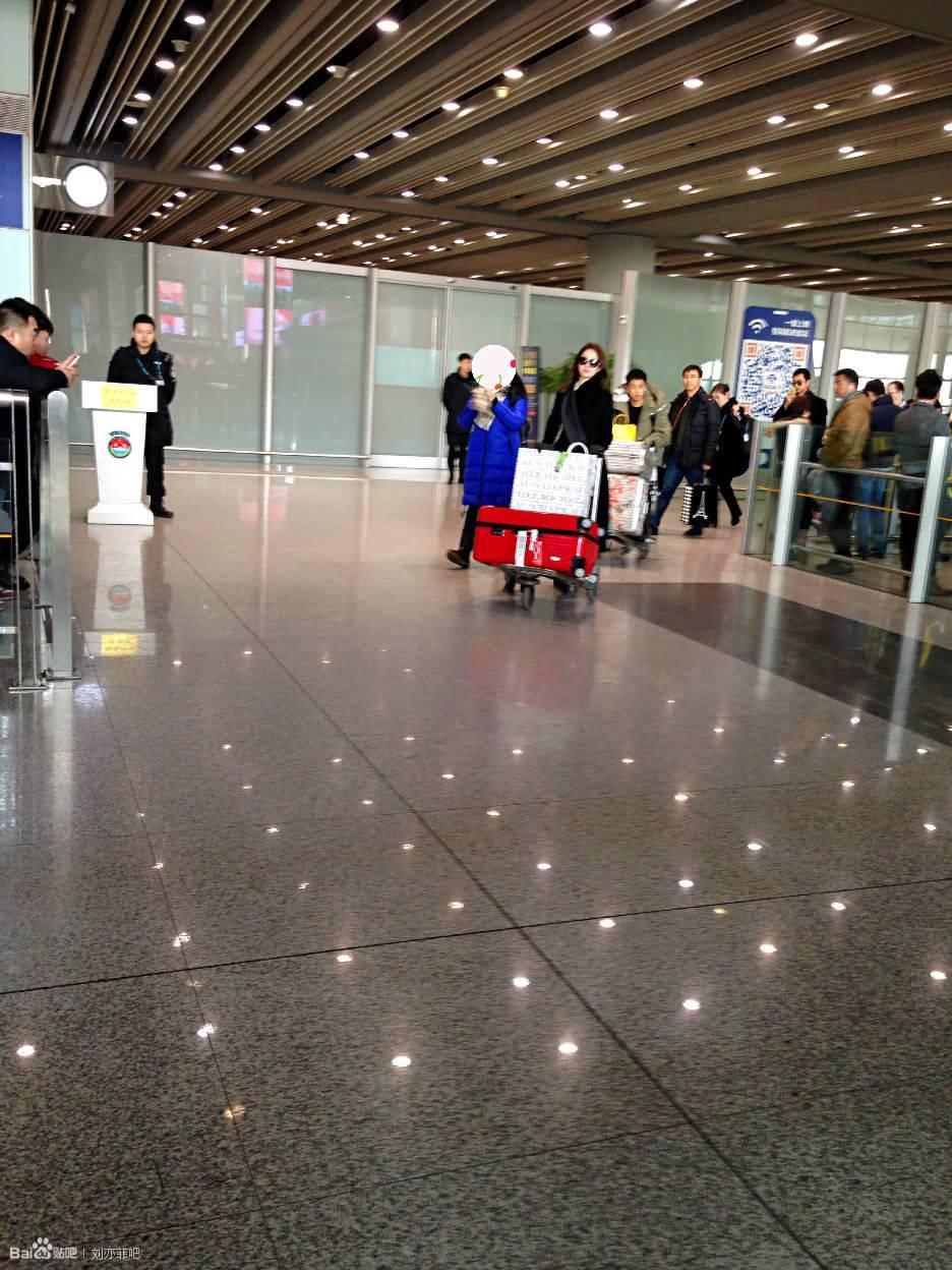 北京接机记  《刘亦菲》[2016.1.28]