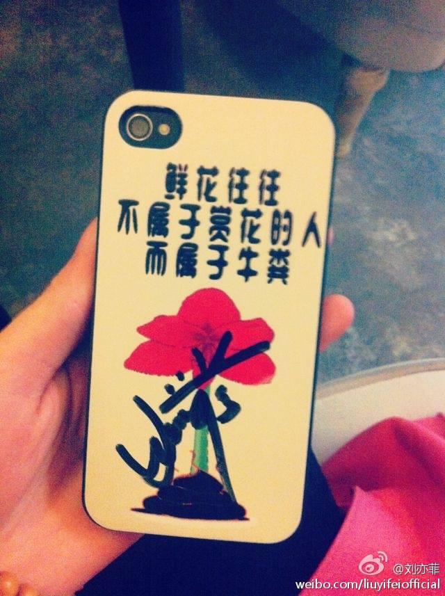 2014年茜茜微博图片(节选)。整理:LiuYifeiThaiFans