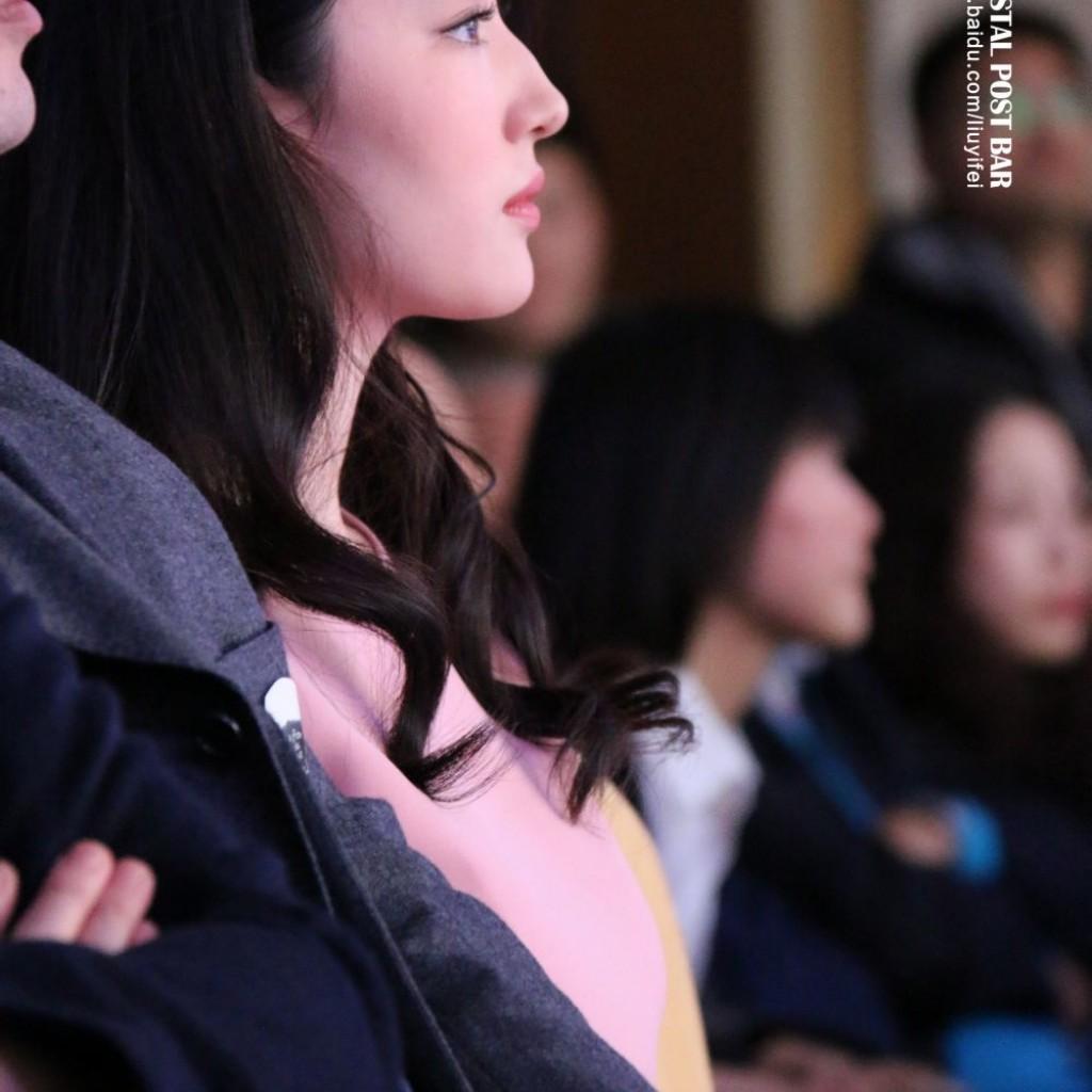 《如果没有遇见你》发布会  《刘亦菲》[2015.2.8]